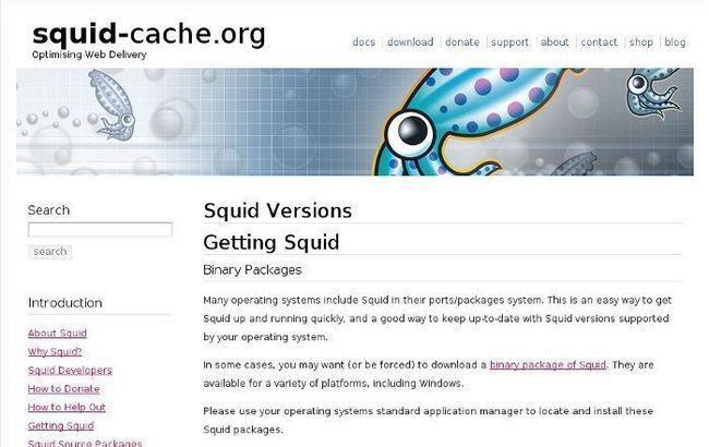 old-pc-squid